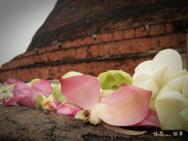 jetavana stupa 3 resized